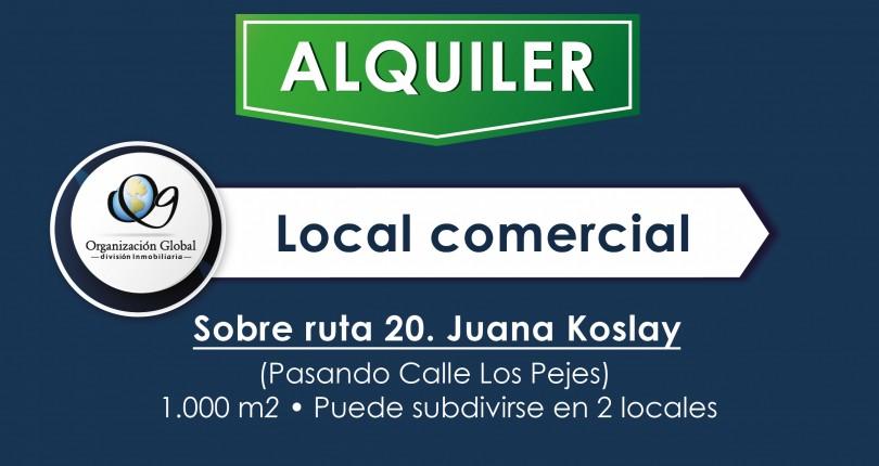 Local Comercial. Ruta 20. Juana Koslay