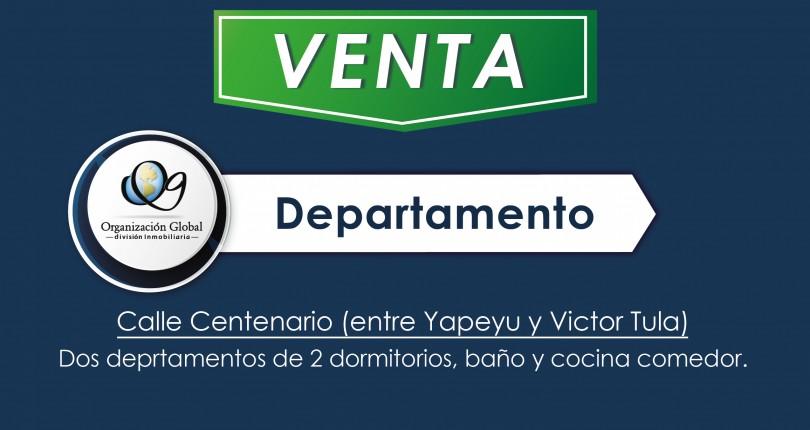 Departamentos de 2 dormitorios en Calle Centenario